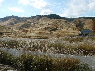 砥峰(とのみね)高原